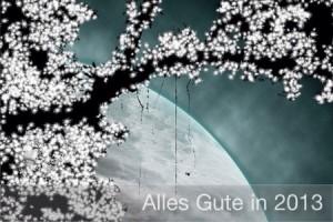 IMG_20121231_1